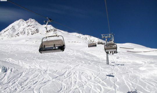 Stolheis over skiløype